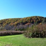 Dover NY homes for sale
